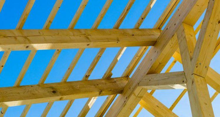 Holz für Dachstühle von Leiße Sägewerk und Holzhandel GmbH
